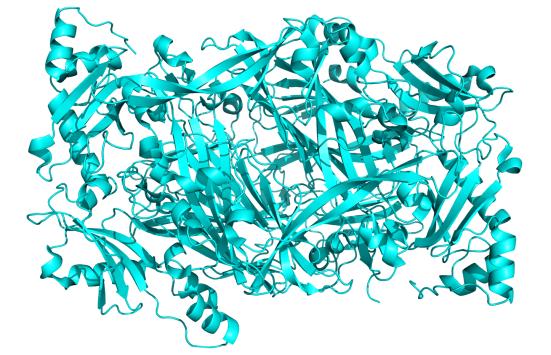 Krystalová struktura lidské diaminooxidázy