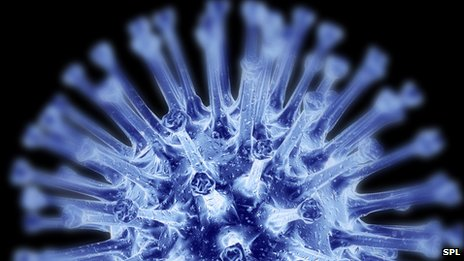 _67759487_c0019141-h1n1_flu_virus_particle,_artwork-spl
