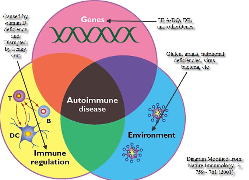Autoimmune-disease-diagram1
