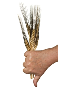 celiac-gluten-free-wheat