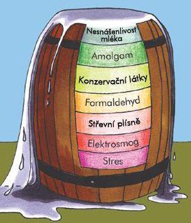 Zdroj: www.optima-bicom.cz