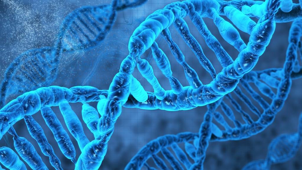 Geny jsou rozhodně fascinující svět a dvoušrobovive DNA krásná. zdroj: www.advanceddna.in