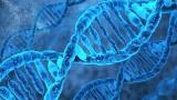 Genetika a HIT aneb když za to genynemůžou