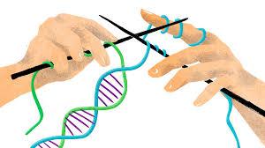 Geny jsou výbava, se kterou můžeme pracovat. zdroj: www.npr.org